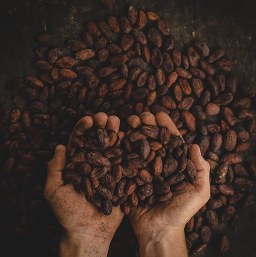 [Keto foods] Dark chocolate and cocoa
